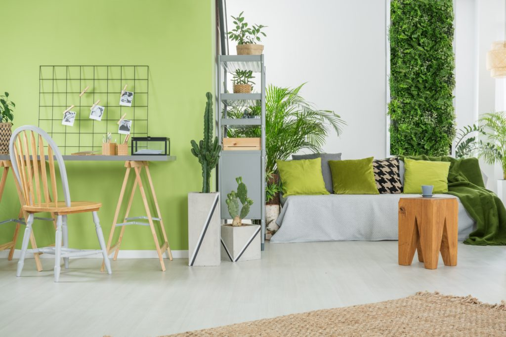 Beautiful Green Interior Space with Cactus and Vertical Garden
