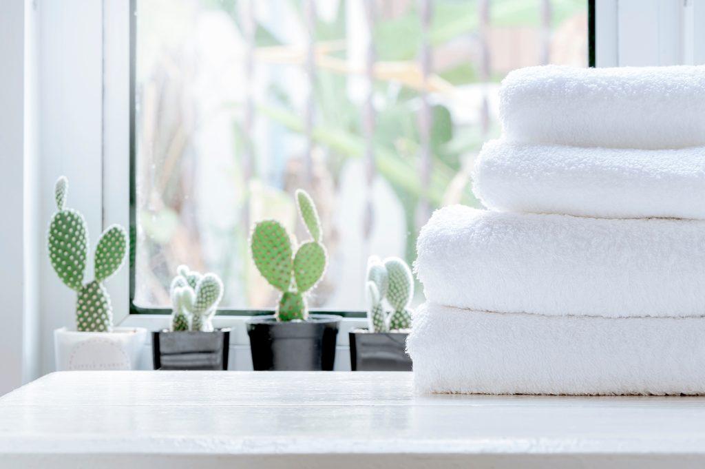 Laundry or Bathroom Cacti Decor on Window Sill
