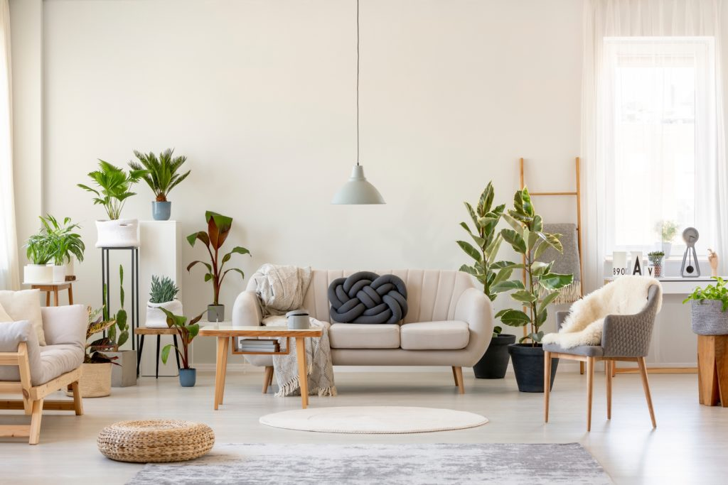 Light Sofa and Two Chairs