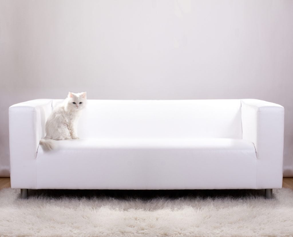 Pure Minimalist Snow-White Leather Couch Design
