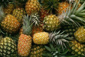 pineapple kitchen rugs