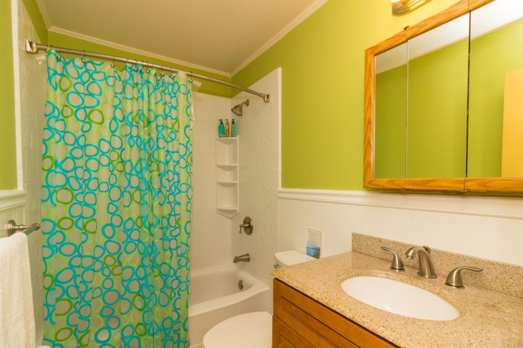 Green Curtain Bathroom