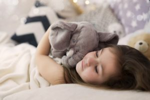 Stuffed Elephant Pillows