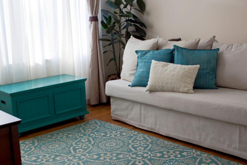 Teal Rug Living Room