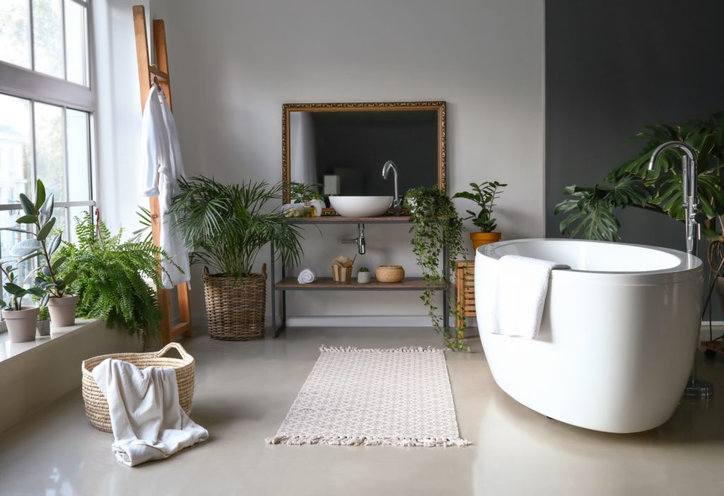 Wicker Houseplants Bathroom
