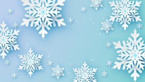 snowflake shower curtains