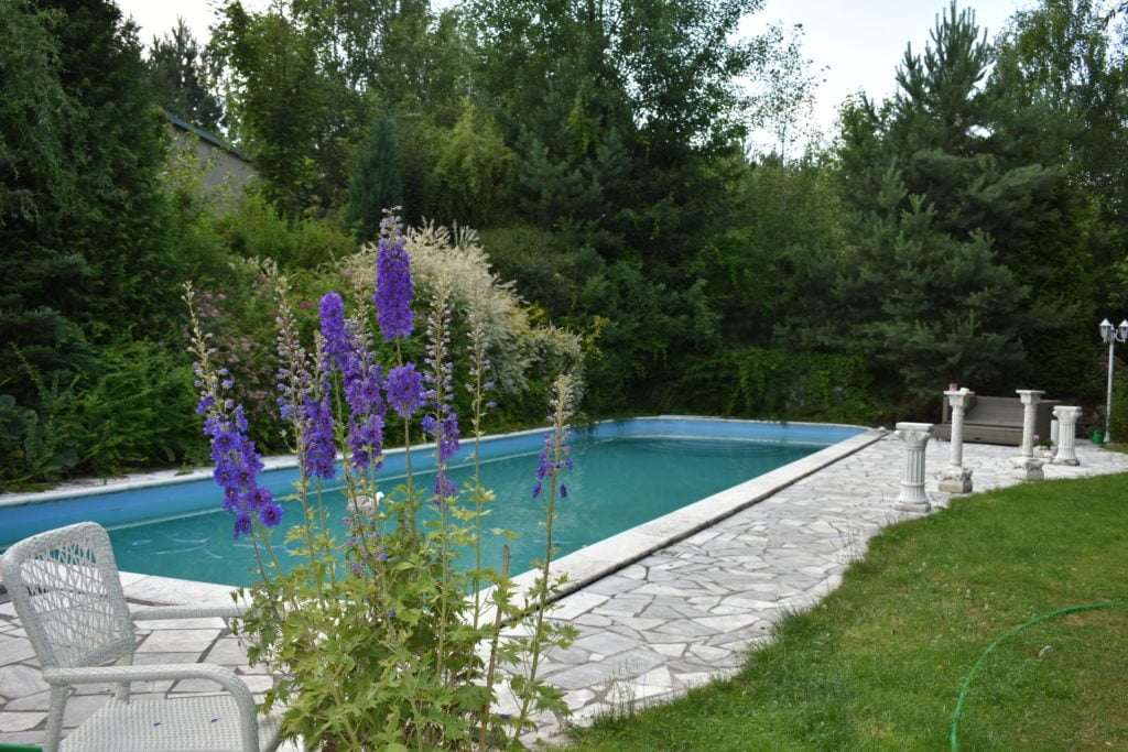 Pool by Garden