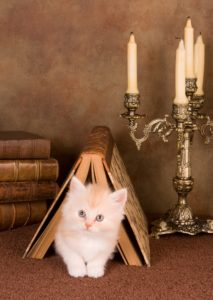 Cat Candle Holders