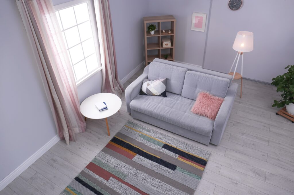 Gray Couch with Multi Colored Rug in Modern Family Room