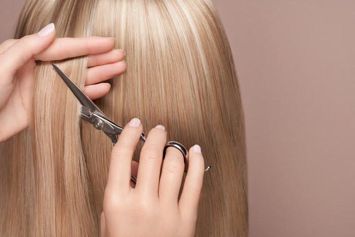 Haircutting Scissors
