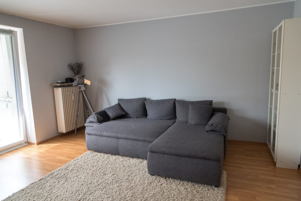 Minimalist Living Room with Large Gray Sofa and Beige Carpet