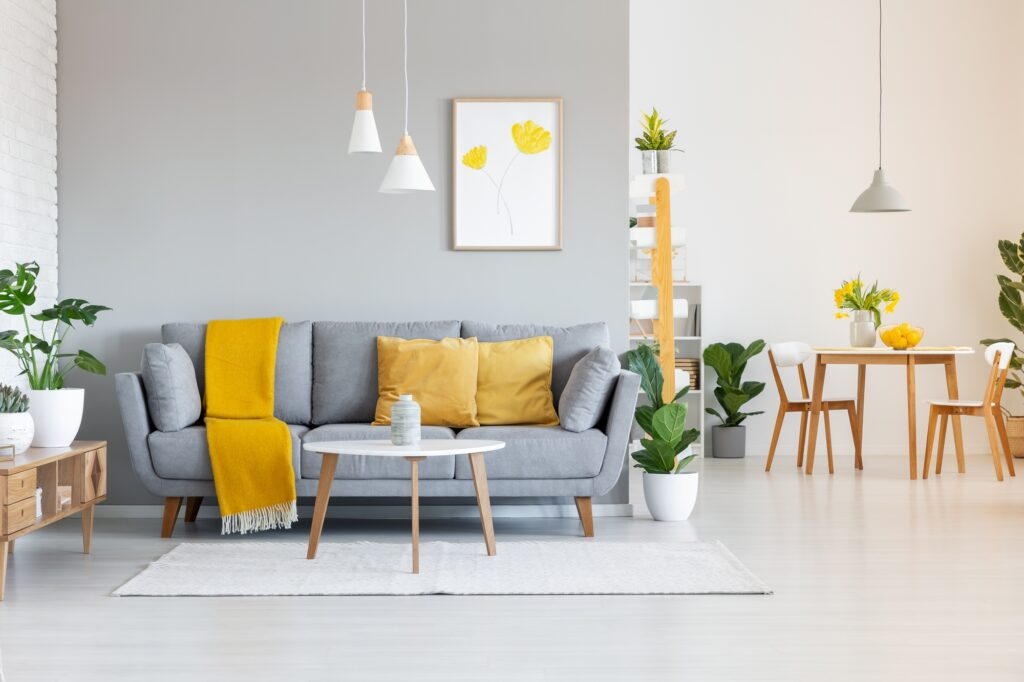 Modern Gray Couch with Pumpkin Orange Pillows and Matching Blanket