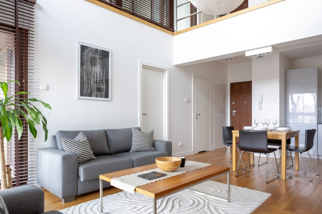 Modern Open Plan Living Space with Gray Sofa and Creative Rug Design