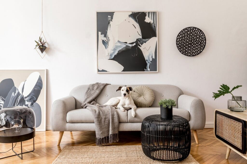 Scandinavian Living Room with Stylish Gray Couch and Natural Fiber Rug