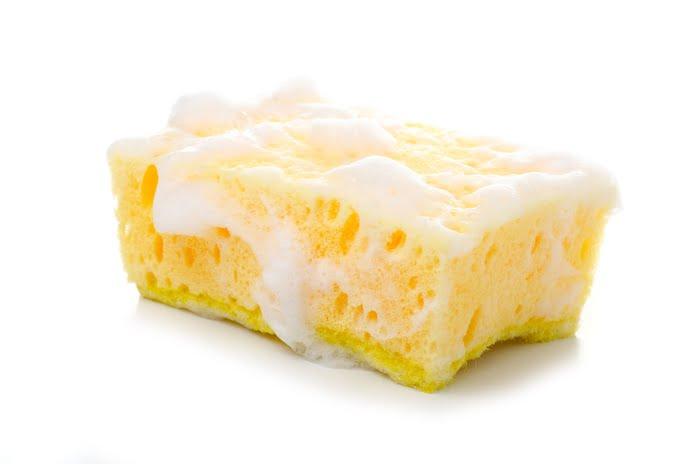 Sponge 1