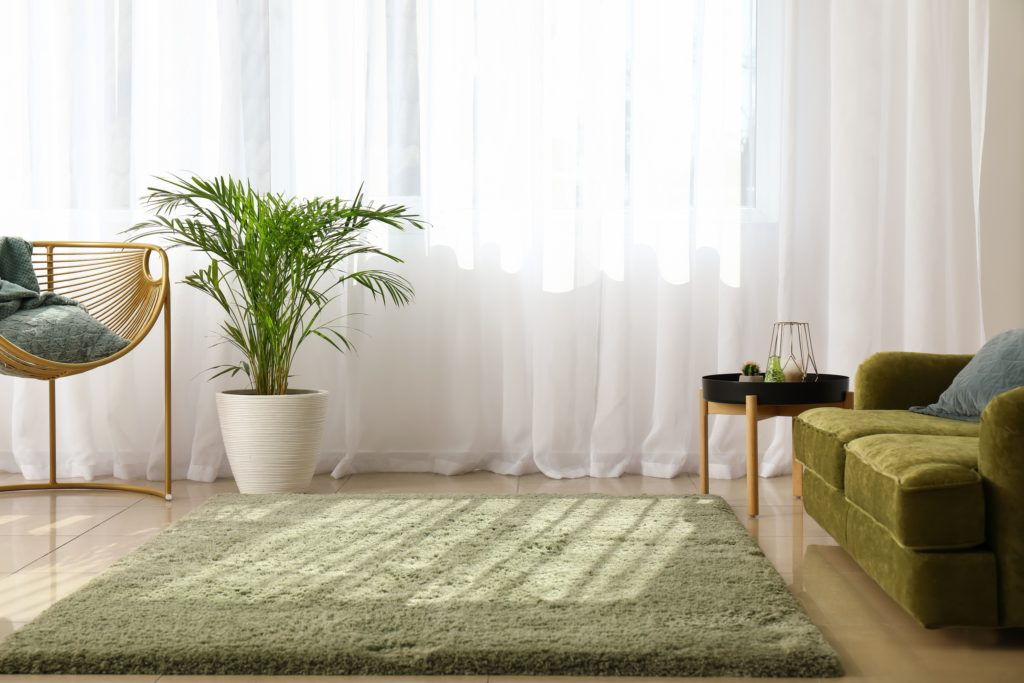 White Curtains and Green Rug