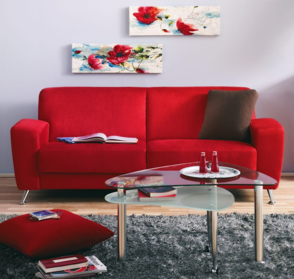 Modern Living Room with Red Couch and Gray Shag Rug