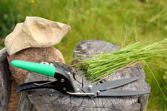 Grass Shears