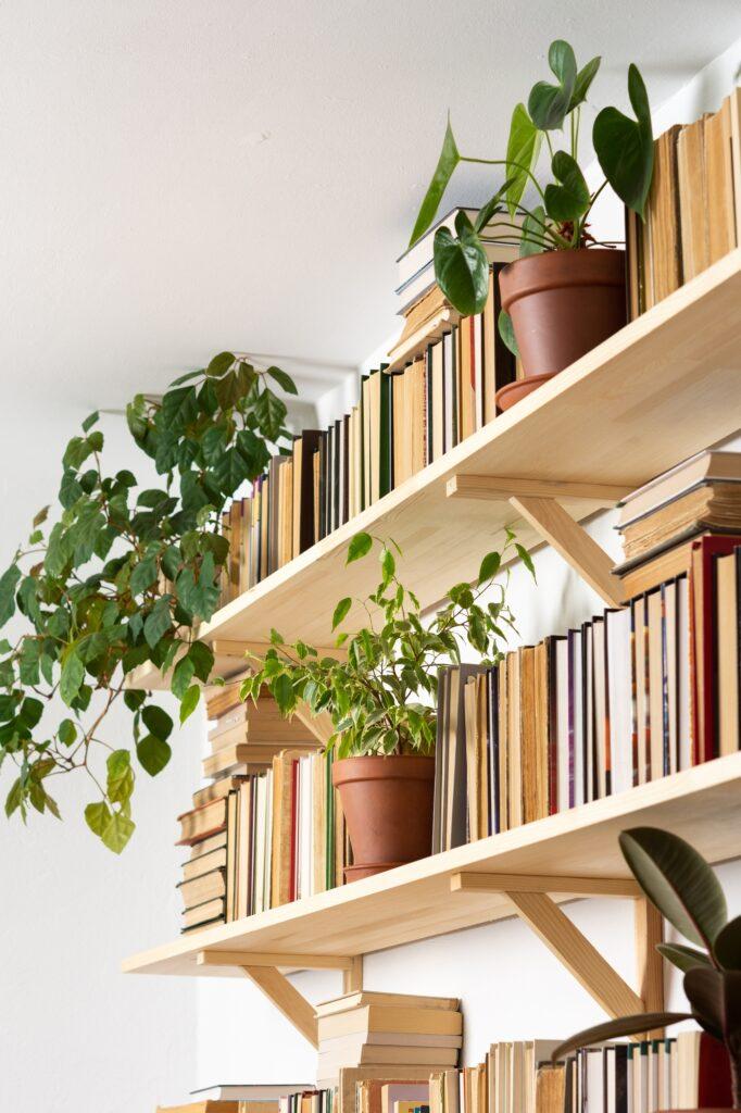 Green Plants 1