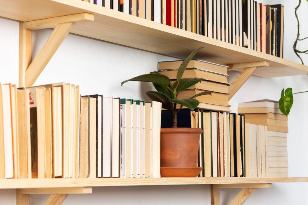 Indoor Plants on Shelf