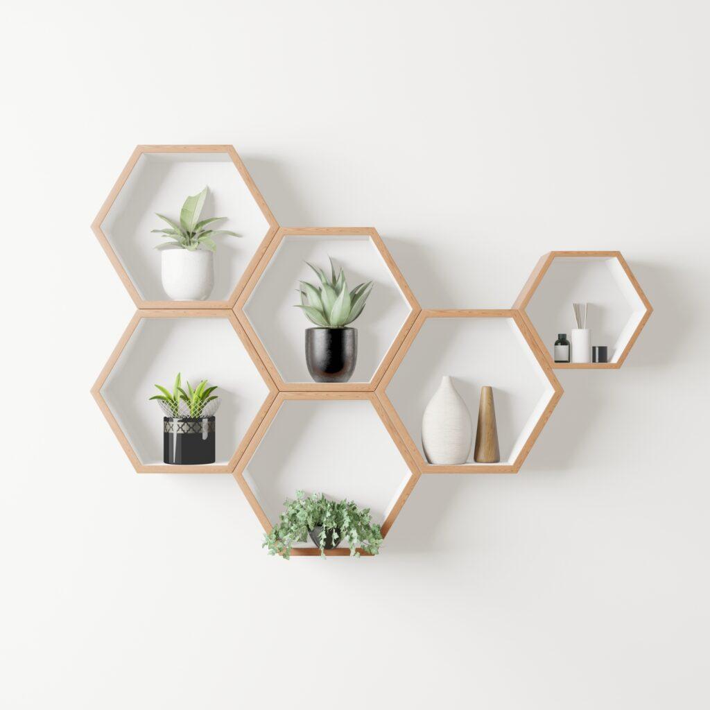 Mini House Plants